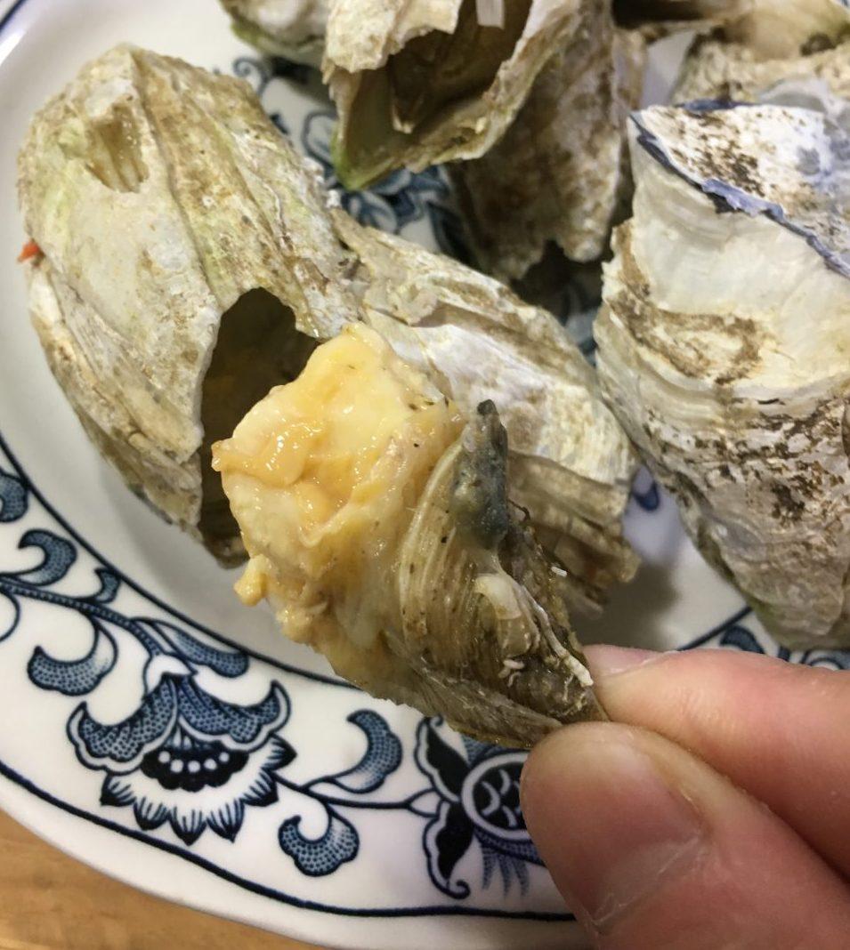 簡単調理でとても美味しい!「フジツボの塩ゆで」